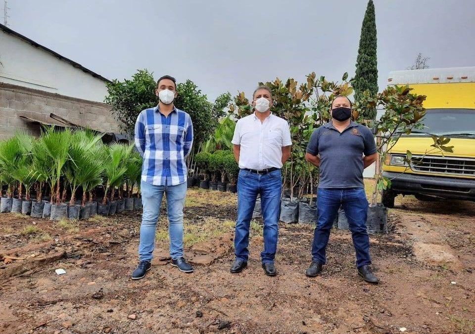 Presidente Municipal de Cananea recibió un cargamento de plantas entre las que se encuentran truenos, magnolias, palmas y demás variedad.