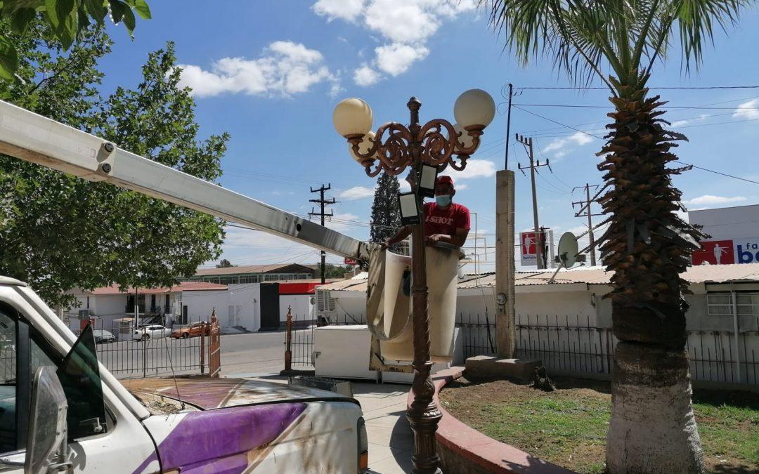 Alumbrado Provisional de tecnología led y remoción de árboles secos en Jardín Juárez.